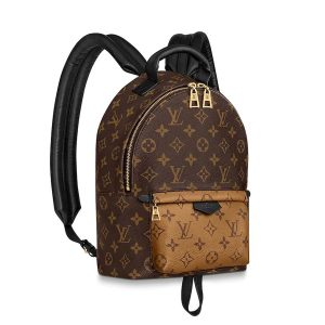 Louis Vuitton LV Women Palm Springs PM Backpack in Monogram Reverse Coated Canvas-Brown