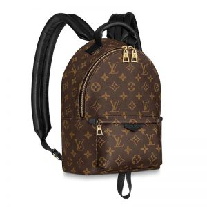 Louis Vuitton LV Unisex Palm Springs PM Backpack in Monogram Coated Canvas-Brown