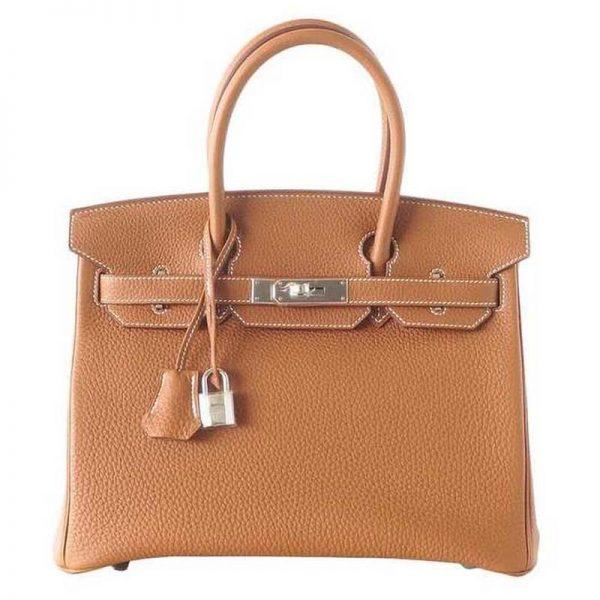 Hermes Birkin 25 Bag in Togo Leather with Gold Hardware-Brown